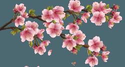Стресс, депрессия и праздники: советы по преодолению